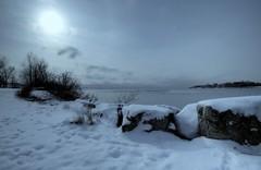 cold steel nights (n+s) Tags: longexposure lake snow toronto ontario canada cold ice water birds topv111 night grey topv333 flock chill humber mimico interestingness21 i500 123n