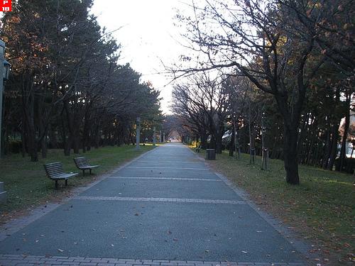 辰巳の森公園