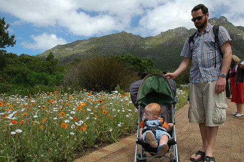 Swee'pea at Kirstenbosch I