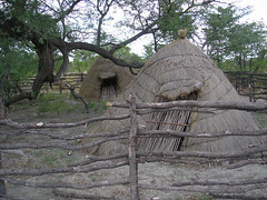 Traditional Basarwa hut.JPG