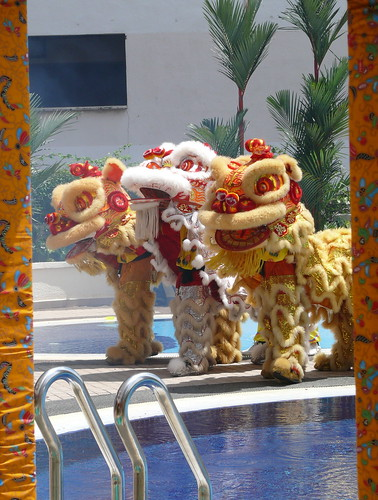 happy chinese new year - chinese lions at my apartment