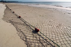 netted beach - by Kalense Kid