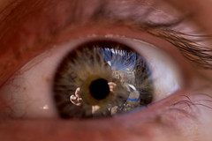 eye spy (sgoralnick) Tags: sky macro reflection eye andy brooklyn fingers eyeball stare greenpoint wideeyed bluetarp sigma50mmf28 sigma50mmf28macro andyclymer