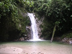 Amazon waterfall rain forest crystalline ecotourism paradise Tena Ecuador