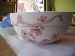 Cherry/Plum Blossom Exterior