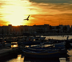 Sunset of the Peace (Liv ) Tags: travel blue 2 italy 3 tag3 1 photo interestingness nikon perfect tag2 italia photographer tag1 tag ivan 09 planet soe puglia bari the apulia lazzari laiv abigfave nikond80 anawesomeshot superbmasterpiece diamondclassphotographer laivphoto nikonvr70300 santospiritoba
