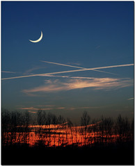 One Year Ago (Silvia de Luque) Tags: trees sunset espaa moon atardecer andaluca spain bravo searchthebest quality luna granada oneyear rboles lazubia haveaniceday flickrmaster blueribbonwinner supershot alhambra2006 silviadeluque abigfave photofans mifav colorphotoaward impressedbeauty superaplus aplusphoto superbmasterpiece brpblue flickrdiamond bratanesque temb blueminustime