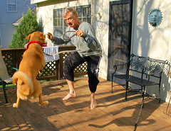Jumping on Deck with Darby (ricko) Tags: dog me jump jumping saveme5 deleteme10 deck darby futab