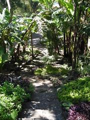Guatemala Trip 2007 041