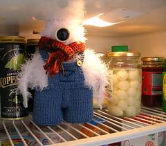 Yeti in the fridge