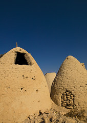 Mud houses, Syria (Eric Lafforgue) Tags: houses house color colour vertical architecture outdoors photography community day desert mud middleeast nopeople hasselblad hut dome syria beehive hama siria traditionalculture  levant syrie