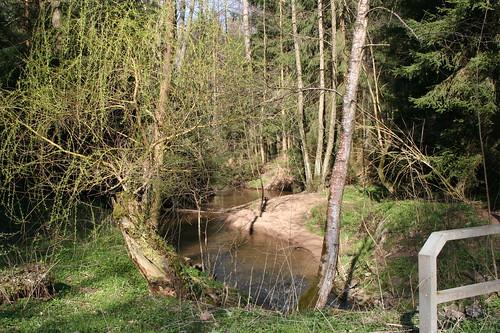 Gründlach im Sebalder Reichswald