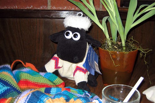 Shaun at Knitting Group