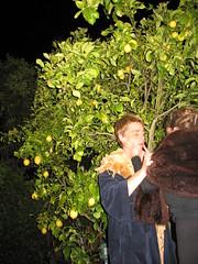 hansel and gretel beat the witch & make coats before making lemonade. () Tags: deleteme5 deleteme8 deleteme deleteme2 deleteme3 deleteme4 deleteme6 deleteme9 deleteme7 de oakland deleteme10 cinco mayo ff meyers hansel gretel babyskin sealfur