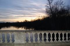 DSC_0221 (Sara Galer) Tags: november february clumberpark