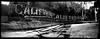 californian. los angeles, ca. 2006. (eyetwist) Tags: california park camera longexposure light bw panorama white black 120 film monochrome sign analog vintage mediumformat typography mono hotel la blackwhite words losangeles los neon angeles handmade pano text wide rusty wideangle panoramic ishootfilm pinhole company socal 200 rusted transparency signage type scala medium format analogue griffithpark griffith agfa derelict dtla southland californian homebuilt mdf typology typographic emulsion horsley angeleno panopin eyetwist f190 panpin horsleycameraworks mikerignall 110º filmexif eyetwistkevinballuff curvedfilmplane horsleycameracompanypanopin pinholef190 signgeeks