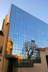 Couleurs de Dijon (nov.-dec. 2016) (godran25) Tags: dijon france bourgogne burgundy couleurs colors immeuble building reflets reflection blue bleu vitres vitrage
