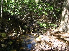 Solstice Creek