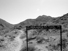 The East Trailhead of the Clara Burgess Trail Photo