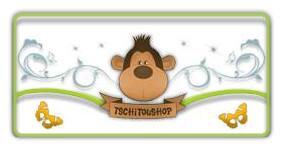 Tschitoushop.com, créateur de t-shirt équitable