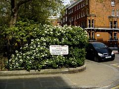DSC03337 Tedworth Square Chelsea (londonconstant) Tags: uk england urban london corner chelsea streetsign gb londra sw3 costi citytrees gardensquare privategardens londonconstant