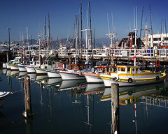 Harbor Reflections (JTHphoto) Tags: ocean sanfrancisco blue sea reflection boats bay harbor pier seaside dock seagull calm oceanside wharf sail fishermanswharf sailboats float flickrsbest