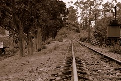 Ooty Coonor Train 3
