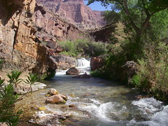 Grand Canyon Tapeats Creek at the crossing below waterfall (Al_HikesAZ) Tags: park camping arizona water 1025fav creek landscape ilovenature waterfall nationalpark hiking grandcanyon grand canyon hike national backpacking backcountry hikes inthecanyon  grandcanyonnationalpark coloradoplateau naturesfinest gcnp awesomenature thunderriver outdoorbeauty unature tapeats unaturefav alhikesaz azwwaterfall   belowtherim