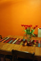 orange you glad i painted my dining room? (jodi*mckee) Tags: orange tulips diningroom orangeburst benjaminmoore apartmenttherapy interestingness126 i500 abigfave explore6may2007