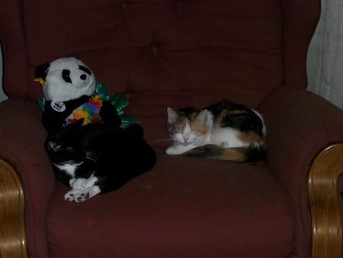 Bettina & Lola 4