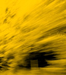 WHEN THE WIND BLOWS (LinBow) Tags: black yellow speed eyes photographer faces wind class diamond fantasy imagination anawesomeshot