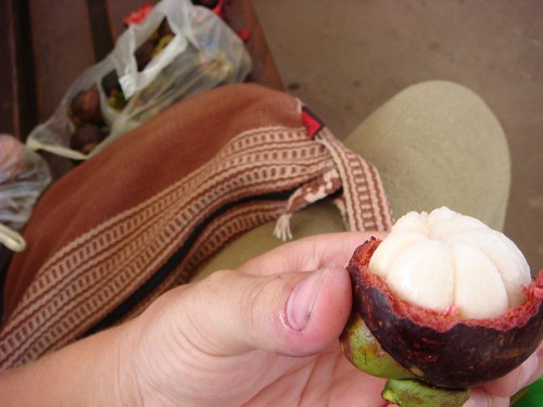 The wonderful mangosteen fruit...