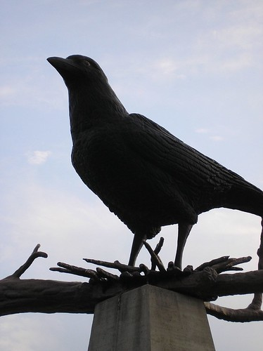 World's Largest Crow