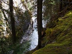 Johnston Canyon (Gentiane) Tags: alberta banffnationalpark johnstoncanyon