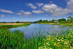 Radipole Lake RSPB Reserve, Weymouth (petervanallen) Tags: blue sky lake green reed water clouds reeds fuji finepix dorset s9500 weymouth rspb naturesfinest radipolelake abigfave