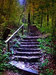 Stairway to Paradise ( D L Ennis) Tags: mountains nature forest virginia woods bravo path steps trail beyond hdr blueridge jamesriver higherground overlooks anawesomeshot superbmasterpiece dlennis stairwaytoparadise