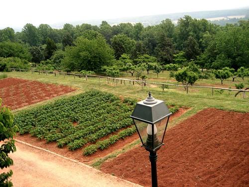 Jefferson's gardens