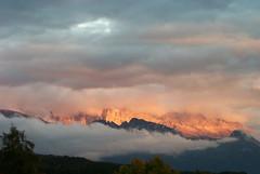 Cloudy Rosengarten