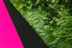 (P)Art (Pieter Musterd) Tags: pink trees black holland art rose psp bomen kunst thenetherlands sculptuur denhaag exhibition zwart downunder tentoonstelling langevoorhout panasonicdmcfz30 pieter007 denhaagschulptuur2007 sculptuur2007 callummorton