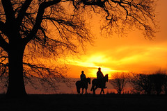Sunset Horse ride (Gary*) Tags: trees sunset sky horses orange nature silhouette topv111 hammer tag3 taggedout landscape ilovenature countryside bravo tag2 tag1 top20sunrisesunset quality lookatme moment top20hallfame horseriding 1on1 interestingness6 83points i500 judgmentday57 abigfave kkfav