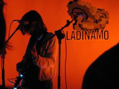 timidez (Xurxo Martnez) Tags: concierto shy timida janahunter ladinamo