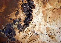 Lunar Landscape (Heaven`s Gate (John)) Tags: uk england brown art beautiful artwork birmingham artist decorative plate clay pottery heavensgate handcrafts biege clayplate johndalkin