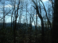 privy view (Palila) Tags: camping hiking trail appalachian day4 appalachiantrail privy hawkmountianshelter