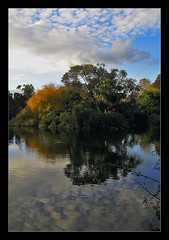 Lake Reflection (aumbody images) Tags: sky lake reflection nature australia melbourne victoria botanicalgardens royalbotanicgardens lovephotography specnature aumbodyimages