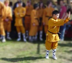 kung fu kungsan 3b