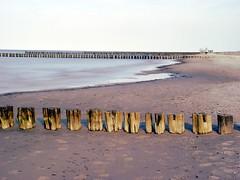 Baltic Sea (Manuela Hoffmann) Tags: balticsea ostsee water 2003 f717 darss pixelgraphix
