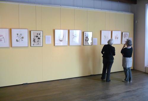 Siebold exhibition
