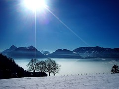 Light Rays (_Marcel_) Tags: schnee trees winter light sky sun mist snow france mountains fog licht frankreich nebel interestingness1 himmel berge topf topv savoie sonne bume silhoutte topi summits bergwiese coldelaforclaz travelog supershot