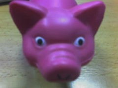 It's a squeezy pig!