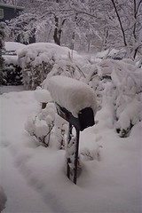 Snow on Mailbox: 2006 by taleswapper, on Flickr